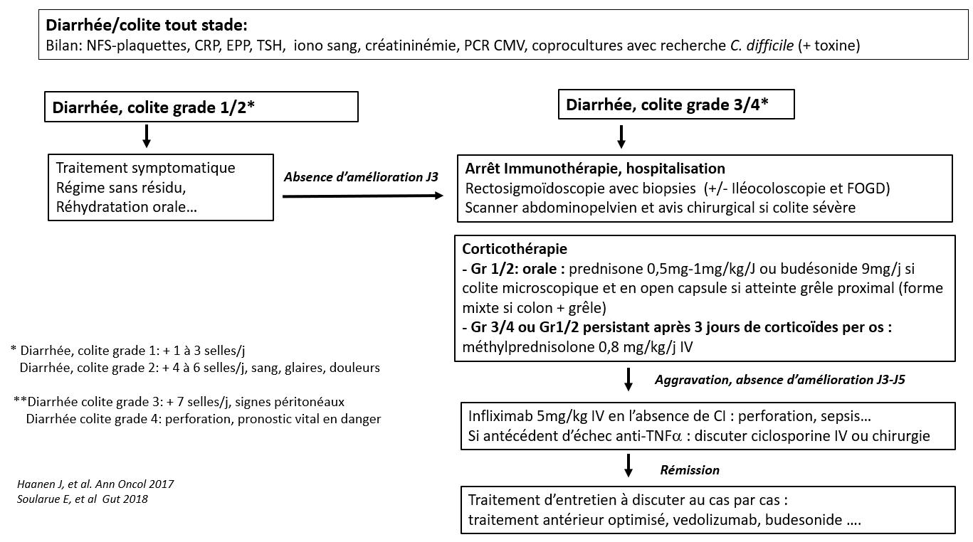 Utilisation des inhibiteurs de check-point chez les patients atteints de MICI